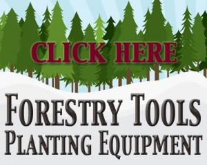 RCB Forestry